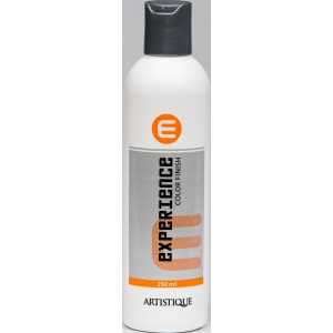 Artistique Experience Color-Finish 250 ml