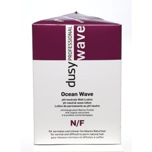 Dusy Ocean Wave