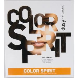 Dusy Color Spirit Farbkarte