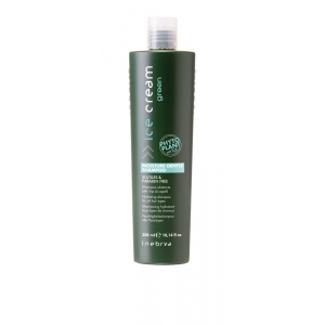 Inebrya Ice Cream Green Moisture Gentle Shampoo