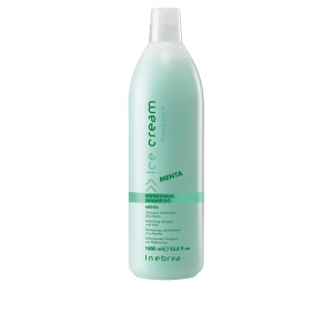 Inebrya Ice Cream Frequent Mint Shampoo